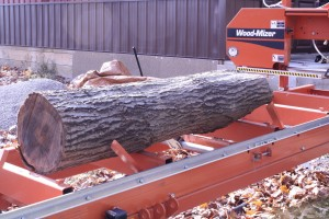 Log on the Wood-Mizer